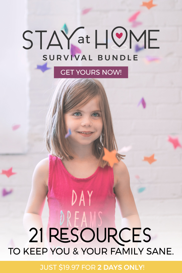 stay at home survival bundle review